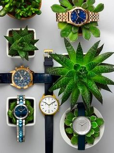 Beautiful Jewellery Photography - online watch store, ladies digital watches, cool watches for men *ad