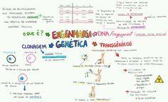 Desconversa | Mapa Mental: Engenharia Genética