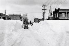 L'avenue Champfleury en 1943