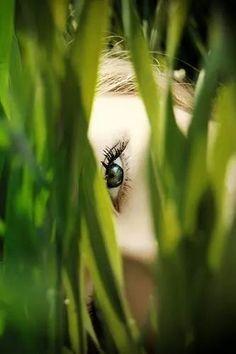 Grün                                                                                                                                                                                 Mehr