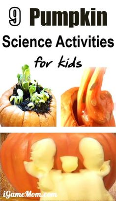 At Home Science Experiments, Science Projects For Kids, Autumn Activities For Kids, Preschool Science, Science For Kids, Stem Activities, School Projects, Learning Activities, Science Jokes