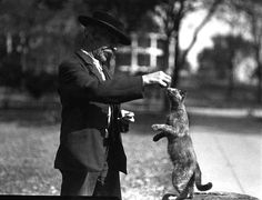 Man feeding a cat at Old Soldiers Home, Minneapolis (1920) by the Minnesota Historical Society