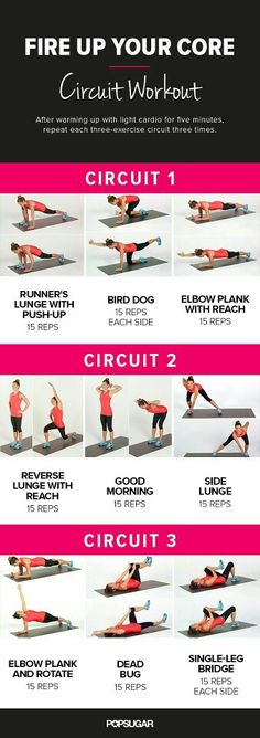 circuit core     Posted By: CustomWeightLossProgram.com