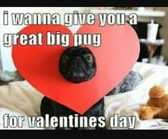 Pin For Later: 14 Perfectly Sarcastic Expressions Of Valentineu0027s Day  Torture Puns, And Pugs, Are Always Welcome On The Big Day.