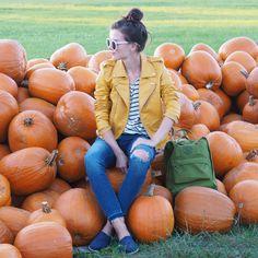 outfit – Page 2 – fresshion Pumpkin Farm, Olympus Digital Camera, Pumpkins, Outfits, Halloween, Suits, Pumpkin, Squash, Kleding