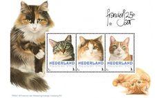 Postset Franciens katten 1