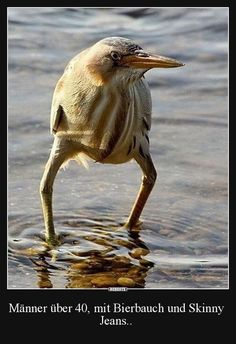 Nothing worse than a guy in skinny jeans. 😂 Funny Pictures Of The Day - 34 Pics Pretty Birds, Beautiful Birds, Animals Beautiful, Animals And Pets, Funny Animals, Cute Animals, Animal Memes, Tierischer Humor, Funny Cute