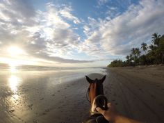 Photo of the Day! Pura Vida. Horseback riding in Costa Rica. Photo by Fernando Colella.  It's Animal Month at GoPro! Share your animal photos: g.gopro.com/animalphotos