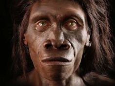 Our ancient human ancestors in 90-seconds.