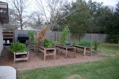 Look at these beautiful raised beds!