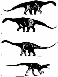 Western Queensland is once again vying for the attention of palaeontologists with the announcement of the discovery of three new species of dinosaur, one Extinct Animals, Prehistoric Animals, Real Dinosaur, Plate Tectonics, Vertebrates, Geology, Reptiles, Habitats, Moose Art