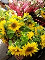 Green center sunflowers available in the last weeks of June. -Bare Mtn Farm