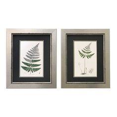 Floral Home Decor 'Vintage Botanical Fern' 2 Piece Framed Painting Print Set