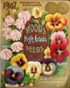 Front cover of 'Woods High Grade Seeds and Guide for the Farm and Garden' (1907) with illustrations of Sweet Peas, Pansies and Nastutiums.T. W. Wood & Sons. Richmond, Va. U.S. Department of Agriculture, National Agricultural Library. Biodiversity Heritage Libraryarchive.org