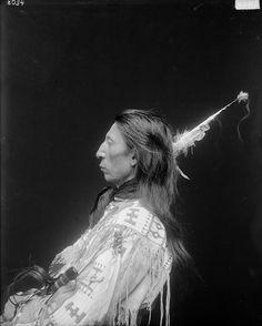 Красное Облако мл. 1913.