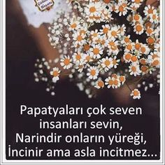 Fotoğraf True Words, Daisy, Quotes, Pictures, Sign, Google, Daisies, Gifts, Quotations