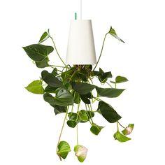 Skyplanter - Medium Recycled White