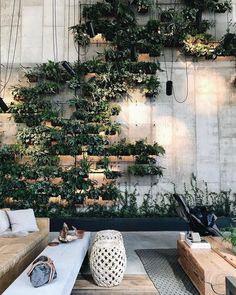 A hidden garden for the plant aficionado at the 1 Hotel Brooklyn Bridge
