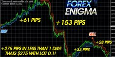 Reviews   Forex Winners   Free Download