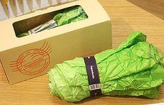Vegetabrella, an umbrella looks like a Head of Romaine Lettuce