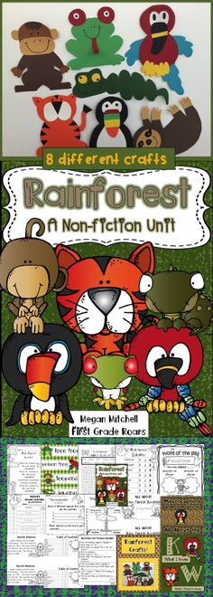 Rainforest Activities This packet will help guide your students through a rain forest adventu Rainforest Preschool, Rainforest Classroom, Rainforest Crafts, Rainforest Project, Rainforest Habitat, Rainforest Theme, Rainforest Animals, Jungle Animals, Wild Animals