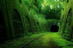 Via abandonada en Francia