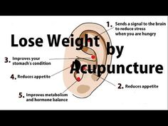 How To Apply Acupressure For Weight Loss : Lose Weight by Acupressure Earrings | Easy Simple Japanese Method to control appetite