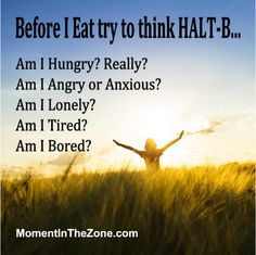MomentInTheZone.com Binge Eating Series. This week sharing the HALT-B technique to keep from emotional eating and binge eating.