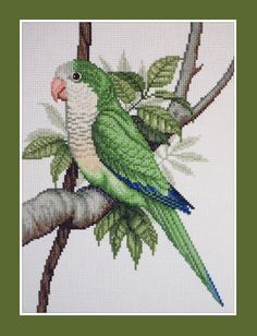 Quaker parrot cross stitch; e-pattern available