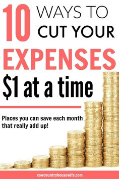These are great ideas to save money! Frugal living doesn't have to be hard. Ways to save money are everywhere. Every $1 counts and it really adds up. She'll show you how! 10 Ways to Cut Your Expenses $1 at a Time