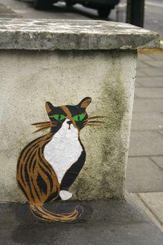 Pivo. street art green eyed cat