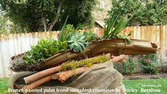 Palm frond container for succulents.  No handy palms in Iowa but a neat recycling re purposing idea.