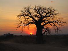 Tete, Mozambique (where I'm happier than ever)