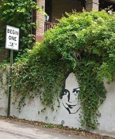Creatively Placed Graffiti