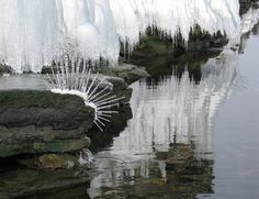 ice sculpture and photograph by Sally J. Smith