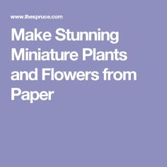 Make Stunning Miniature Plants and Flowers from Paper