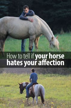 Loving your horse too much can become very frustrating for him. Here is what happened to me recently.