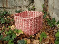 veronica / červený košíček