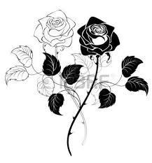 Image result for thistle and rose tattoo black and white