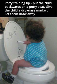 Potty training brilliance
