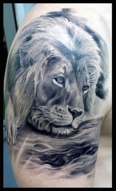 Detailed lion tattoo