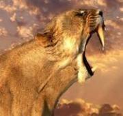 Sabre-toothed tiger   Big cats   Pinterest   Tiger facts, Habitats ...