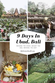 When choosing a place to stay in Bali, we decided we wanted to spend the 9 days in Ubud, one of the most beautiful places in Bali. Ubud is home to vegan cafes, rejuvenating yoga retreats, endless rice fields and lush jungles that holds monkeys and the mos Bali Travel Guide, Asia Travel, Solo Travel, Travel Guides, Travel Tips, Cool Places To Visit, Places To Travel, Travel Destinations, Yoga Retreat