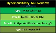 Summary of hypersensitivity, a simple chart to remember important cells and antibodies in different types of hypersensitivity.
