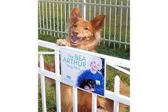 Bea Arthur Dog Park in Norfolk, VA.  I didn't know she was a dog person.  Awesome!
