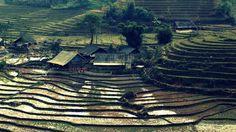 Sapa Sisters Private Trekking Adventures (Vietnam) - Beoordelingen