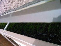 Gutter cleaning Gutter Cleaning, Ottawa, How To Dry Basil, Herbs, House, Home, Herb, Homes, Houses