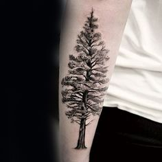 Detailed Forearm Tree Covered In Snow Mens Tattoo