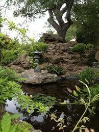 Zilker Botanical Garden   Austin, TX | Zilker Park Isamu Taniguchi Japanese  Garden: Austin | Pinterest | Gardens, Dogs And Botanical Gardens