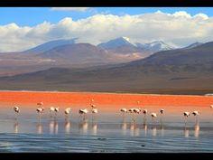 Rotes Wasser in Boliviens Anden: Nicht nur Flamingos lieben diesen Blut-See | traveLink